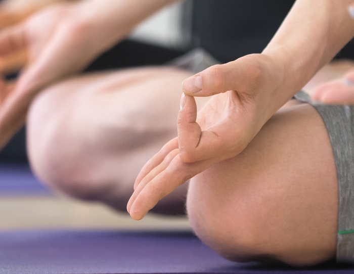 Ashtanga Yoga Studio Anne Faulhauer
